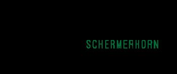 Dorpsraad Schermerhorn